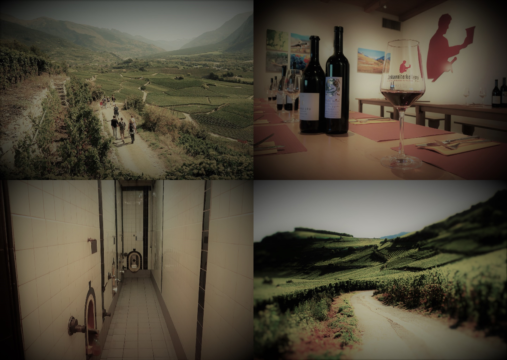 Collage_Wine&Walk